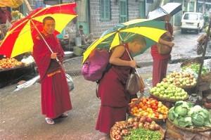 Market_Dharamshala HP