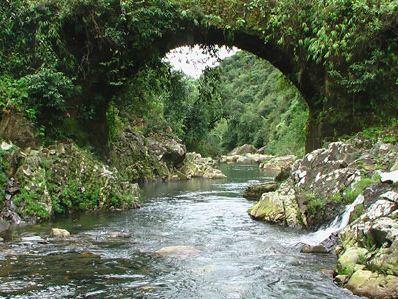 meg-kalsi-David Scott's Trail